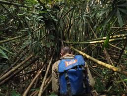 Sur les pente du Pha Koy à la recherche de la résurgence