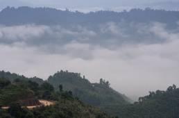 Route de la vallée Nord au petit matin